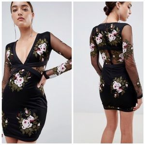 NWT Rare London Rose Embroidered Mesh Dress